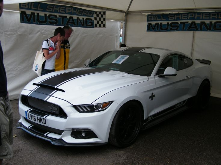 Shelby Ford Mustang