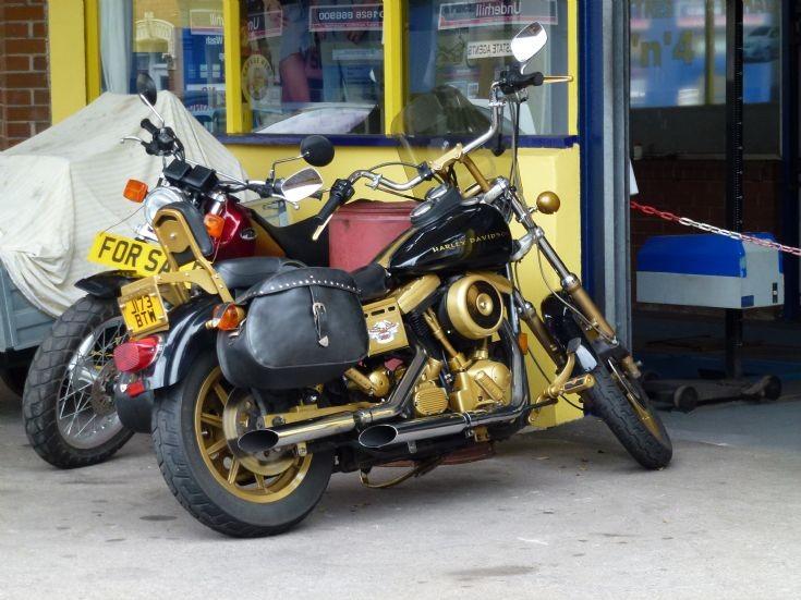 Harley Davidson - gold and black