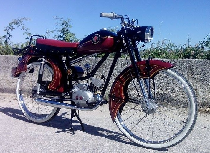 Sachs Felino 1956