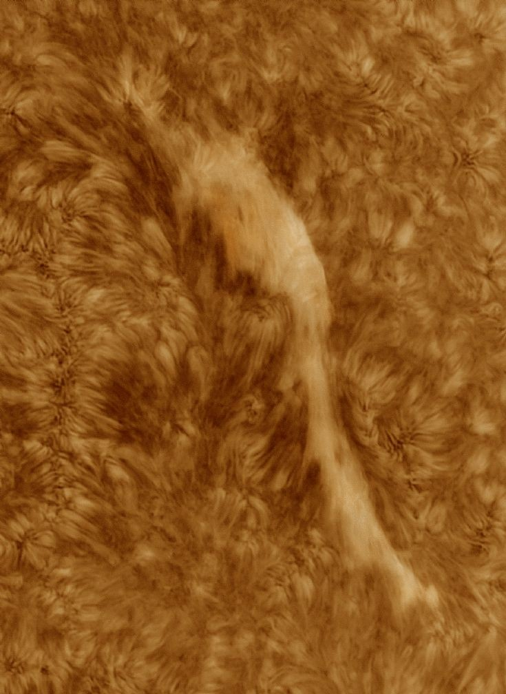 Large filament on Solar disc