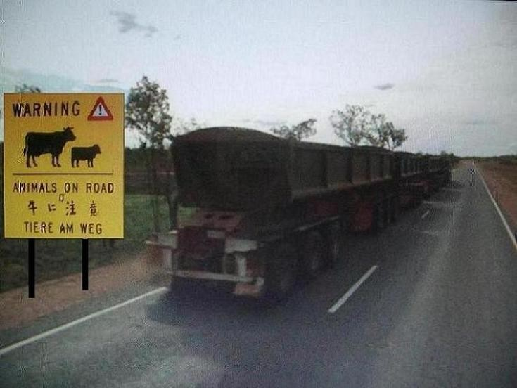 Livestock Warning Road Sign