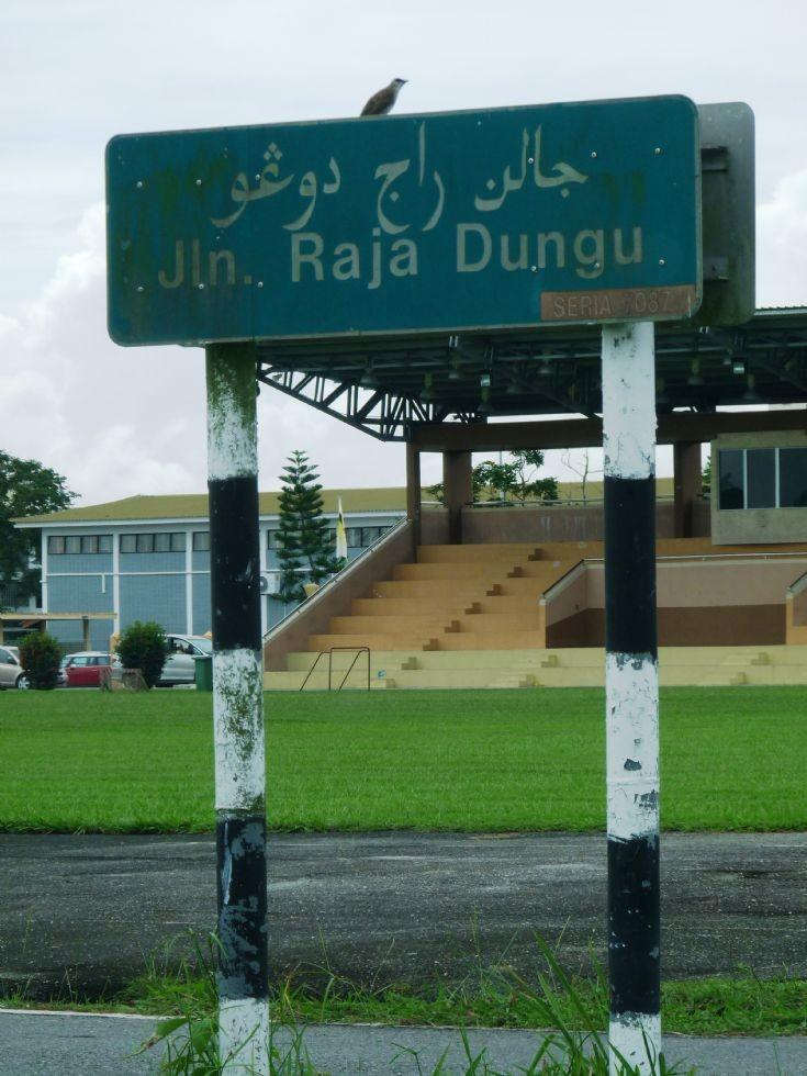 Jalan Raja Dungu