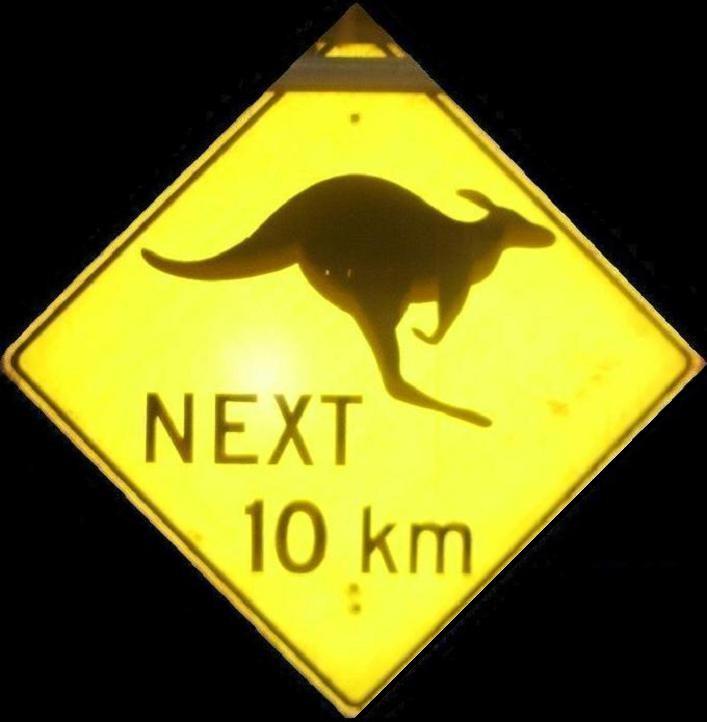 Warning Road Sign Close Up at Night